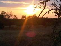 The sun sets over another Texas day near the ranch on Farm Road 219.