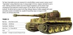 Profile - Tiger