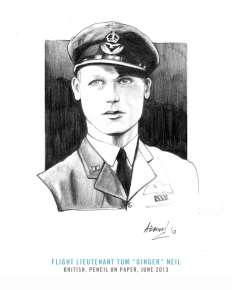 "One of the most gifted flyers on Malta was Tom Neil of Bootle, Lancashire (14 July 1920), who joined the RAF Volunteer Reserve (VR) in October 1938, at the age of 18. His interests in aviation went early, and as a child, he was frequently found drawing aircraft of all sorts. His skill in freehand sketching even netted for him a prize while he was at Eccles Secondary (grammar) School. And the subject of the drawing? An aircraft. Heavily engaged during the Battle of Britain, he shot down 11 planes and shared in the destruction of four others — all without being shot down himself. With a DFC and promoted to flight leader, he was sent to Malta, where the found the conditions appalling and the attitude of the RAF chief on the island, the bulldog-faced Air Vice-Marshal Hugh Pughe Lloyd, indifferent. Infuriated at the heavy combat casualties experienced by 249 Squadron on the island, Neil placed the blame squarely on Lloyd. ""So many people were lost unnecessarily,"" he said. ""So many golden people shot down because the people leading us didn't really know what was happening. We were flying stuff we should've never have flown...because Lloyd was concentrating on other things."" Transferred back to England soon after, Neil spent the rest of the war holding a series of successful commands, although he never scored another aerial victory again. He is still alive as of today."