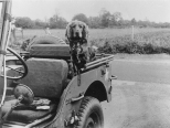 """Flap,"" the mascot of the 448th Bomb Group sits on a jeep. (Roger Freeman Collection FRE1800)"