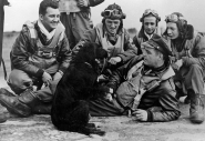 The crew of a 91st Bomb Group Flying Fortress play with their dog. (Roger Freeman Collection FRE3527)